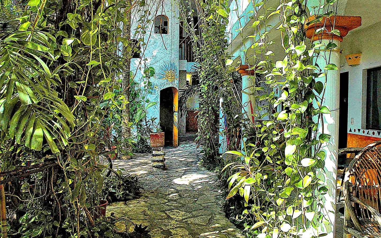 Casa Tucan garden walk from the reception