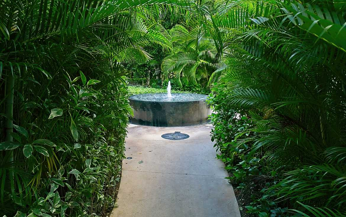 Through your tropically enveloped walkway to G11.