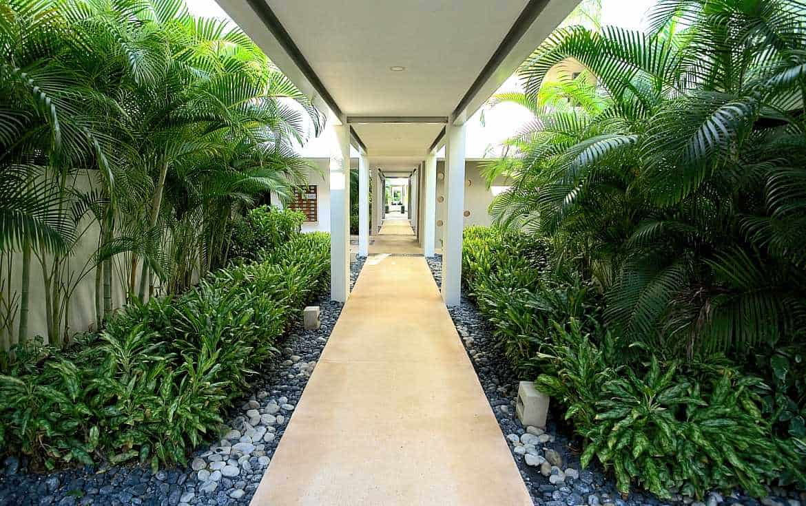 Pure tropical landscaping everywhere in the LAO Condominiums.